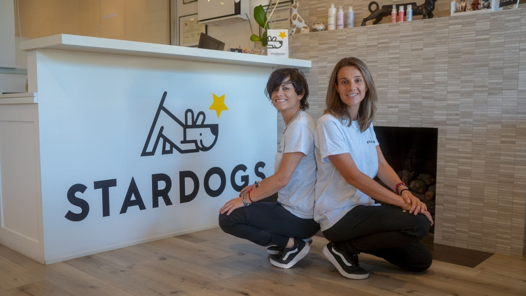 Stardogs owners
